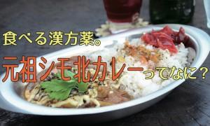shimokitacurry