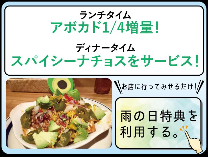ame1-avocado